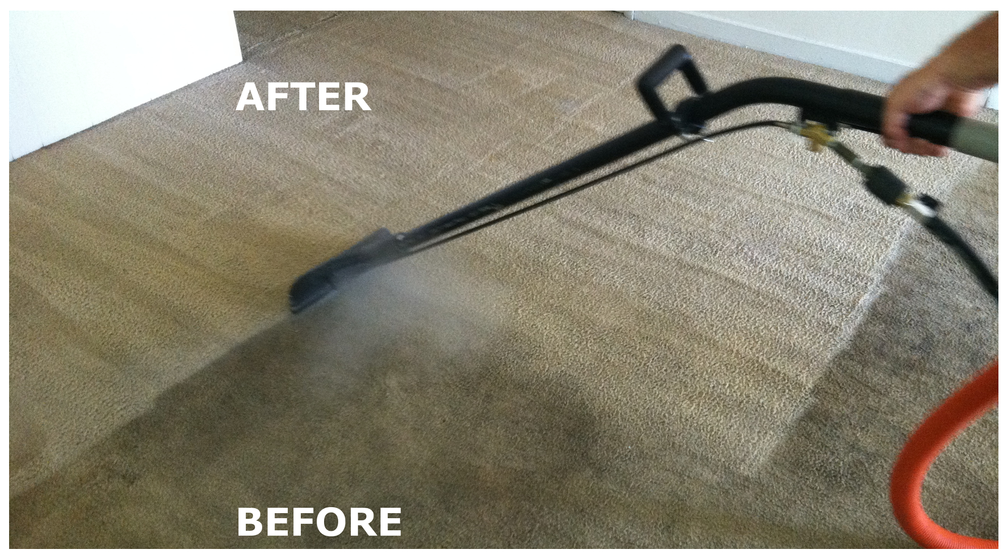 Carpet Steam Cleaning In Clayton Ringwood Amp Melbourne